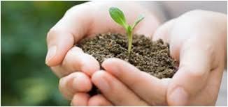 Sistemas de Gestión Ambiental bajo ISO 14001:2015